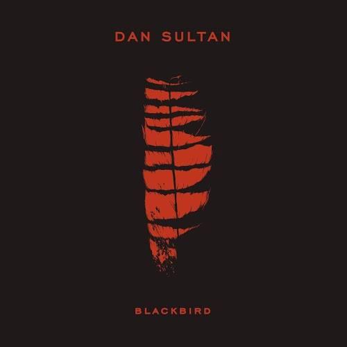 Dan Sultan - It Belongs To Us